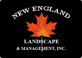 New England Landscaping & Management, Inc.